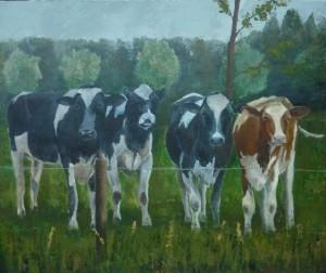 Koeien in de wei van Monique Bouter